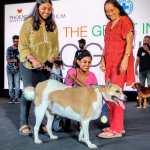 Winner of 'Biggest Dog' title
