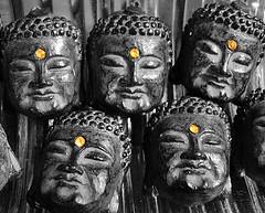 buddha5eyes