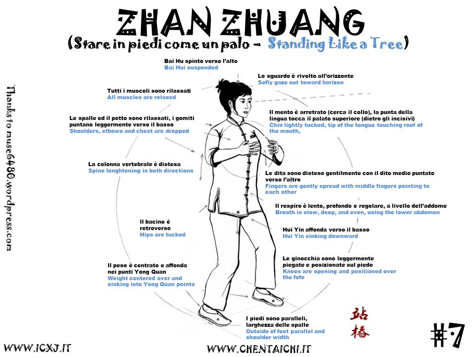 taichi taijiquan palermo zhan zhuang