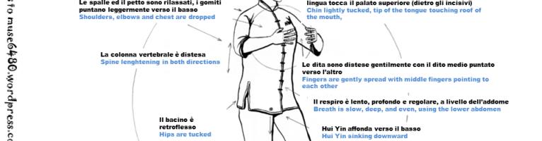 Pillole di TaiChi #7: Zhan Zhuang