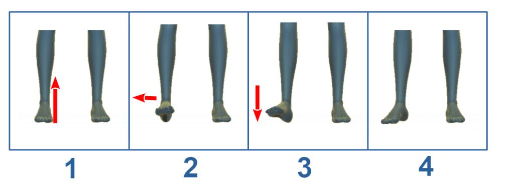 apertura e chiusura del piede nel taijiquan