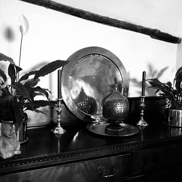 october2017 lovesalisbury brass shadows potplants