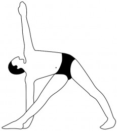 asana archives  page 2 of 2  iyengar yoga with cheree low