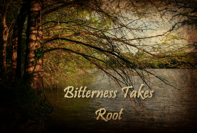 BITTERNESS TAKES ROOT