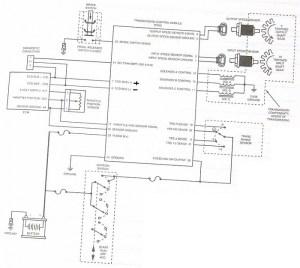 99 TCM diagram AW4  Jeep Cherokee Forum