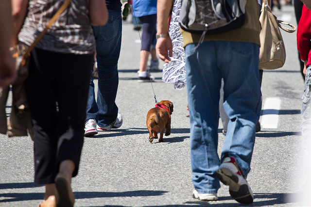 Walkable Areas Are Getting More Competition