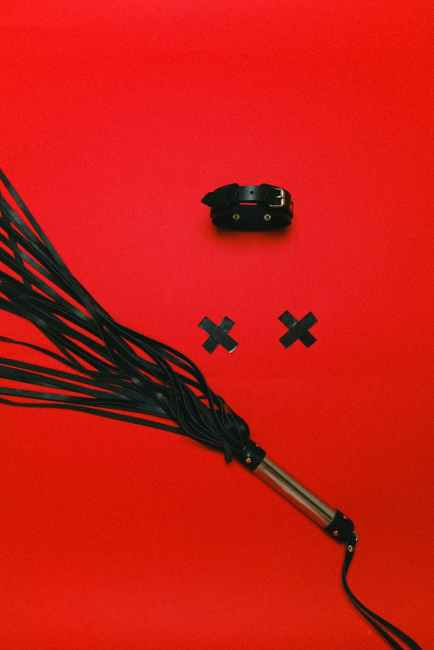 """A black leather whip on a red background with a black collar and two black tape """"x""""s."""