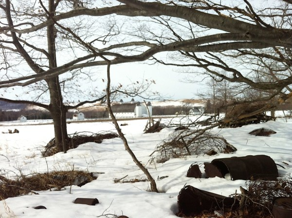 Hard-packed snow around D.H. Day Farm