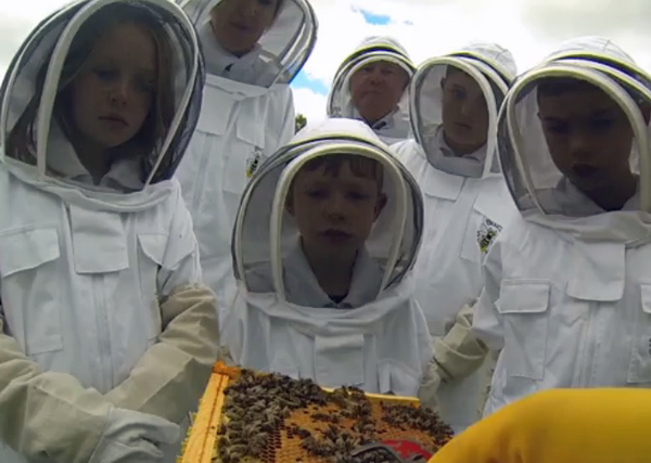 Children at Ness Gardens getting up close with Honey Bees