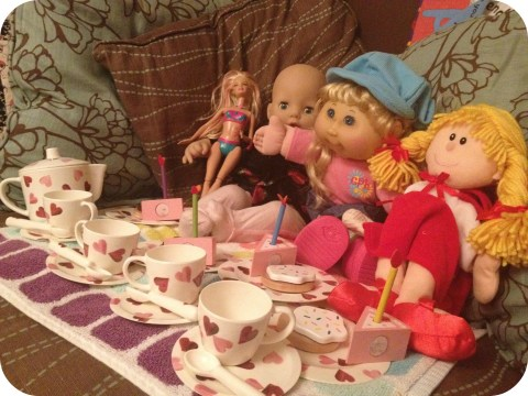 Dolly Indoor Picnic