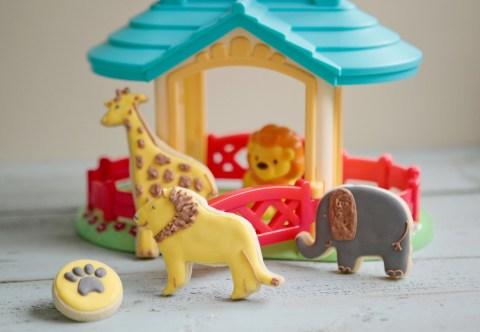 Childrens Birthday Safari