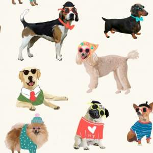 rasch-dogs-in-sunglasses-retro-60s-pattern-labrador-pug-wallpaper-273502-p3200-7152_medium