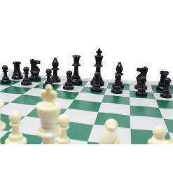 チェスジャパン スタンダードチェスセット ワールド 51cm グリーン 2