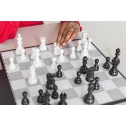 チェスコンピューター DGT Centaur 4