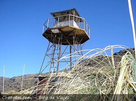 Foto de un Mangrullo, Altas Cumbres