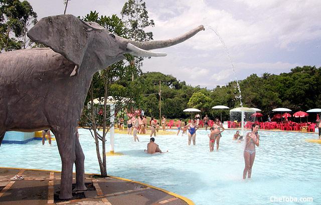Piscina elefante