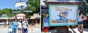 Disney parques de agua en Orlando - Blizzard Beach o Typhoon Lagoon?
