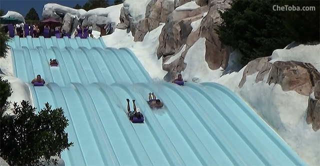 tobogan-race-blizzard-beach
