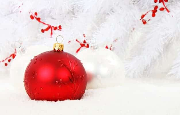 Foie Gras et Noël