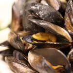 4.7 Private出張メイハネ「ムール貝を思う存分食べたい!」の巻