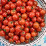 20200515Semi Dried Mini Tomatoes
