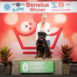 Beneluxwinner NL 2014