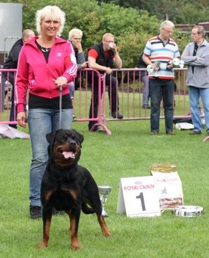 Biloxi 1 Uitmuntend Nederlandse Rottweilerclubmatch 2011