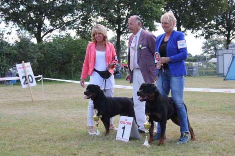 UDEN BEST OF BREED