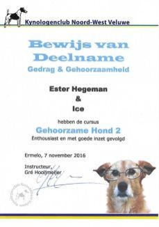 Ice GH 2