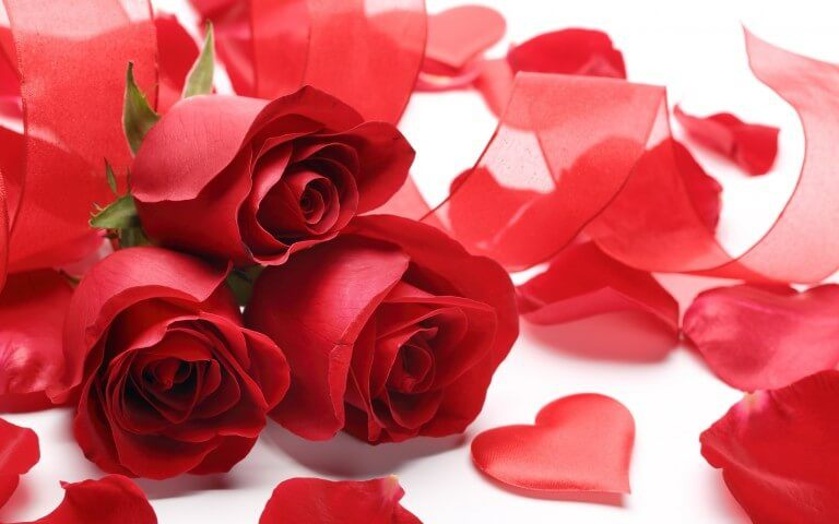 rose day 2018 sms