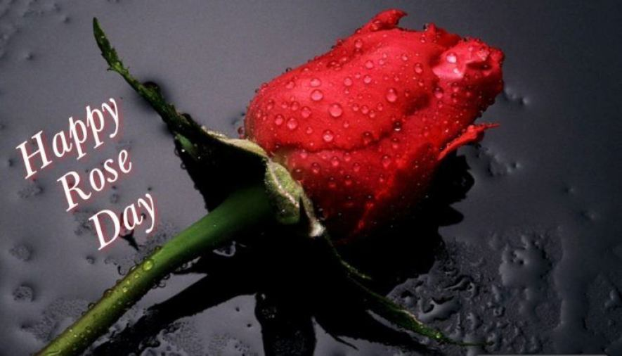 Rose Day SMS For Girlfriend