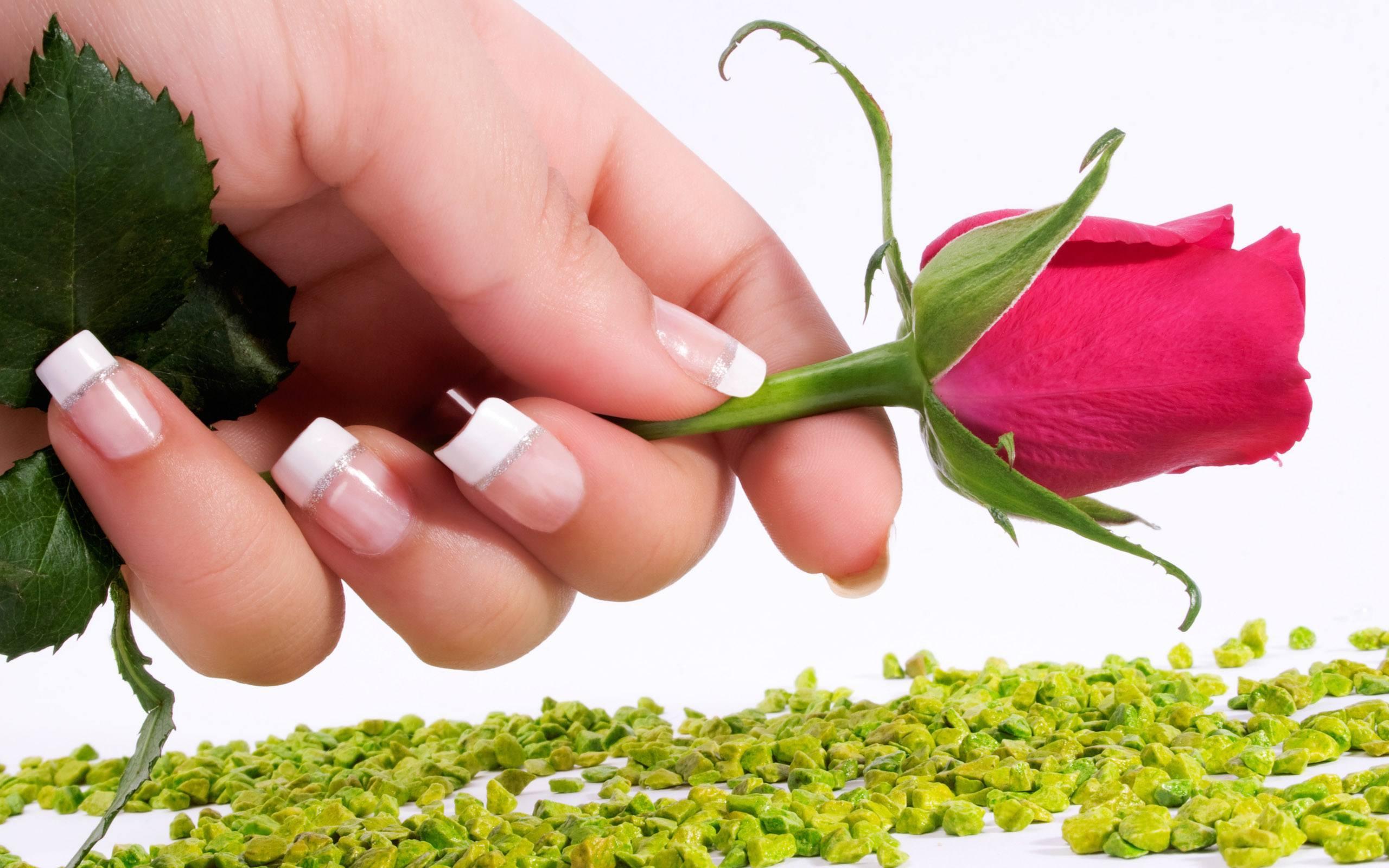 Rose Day Shayari For Boyfriend