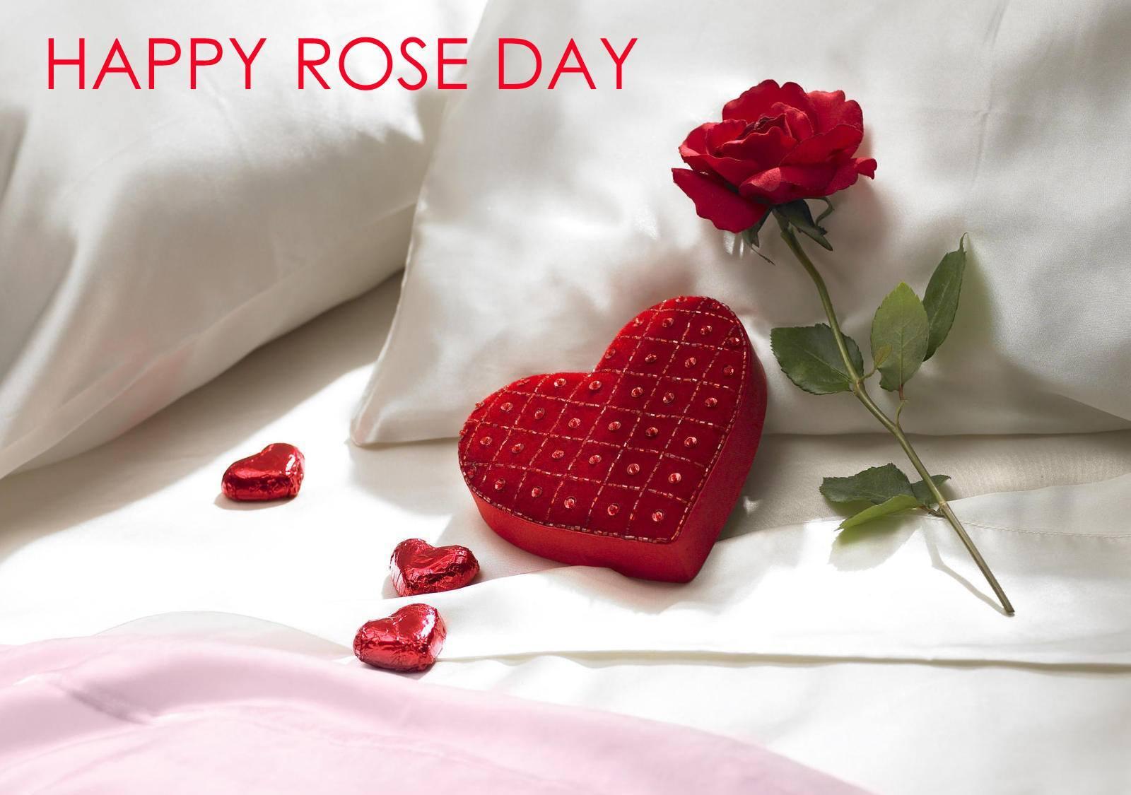 happy-rose-day-wallpaper-2016