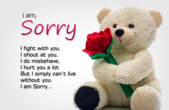 Best sorry message for girlfriend