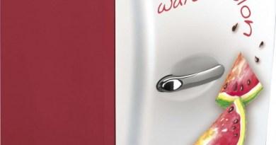 mini frigo portatili anguria