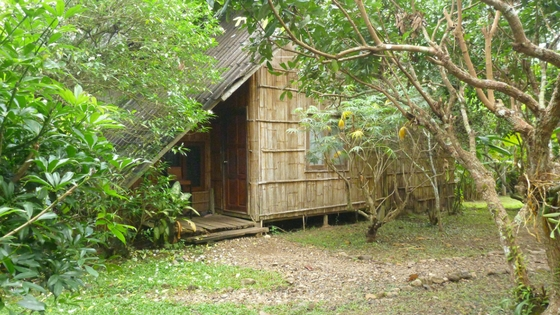 Chiang Dao Nest Hotel - Bungalow 1