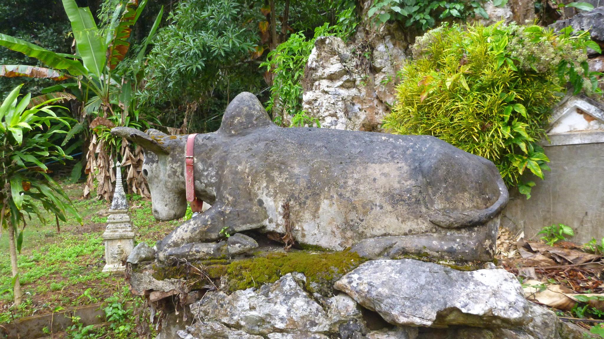 Stone Bull At Buddha Statue Chiang Dao Cave