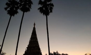 Three palm trees with chedi Wiang Kum Kam