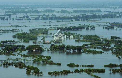 Bloomberg Say Floods Ruining 14% of Thai Rice May Erase Global Export Glut