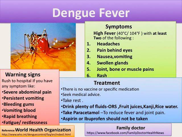This year, Thailand could face its largest dengue fever epidemic in decades with Public Health Ministry estimating that 120,000 people could contract the virus