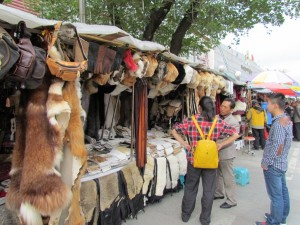 Dog Leather Sold in Vietnam for Gloves, Purses and more..