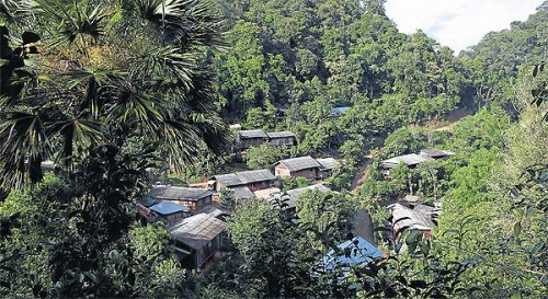 Ban Huay Hin Lahd Nai in Chiang Rai province is one of about 8,800 forest community villages.
