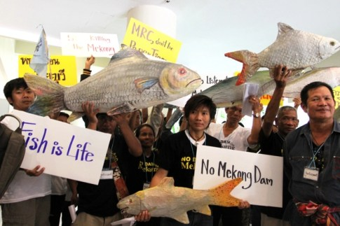 More than 50 species of fish have disappeared since the dam was launched.