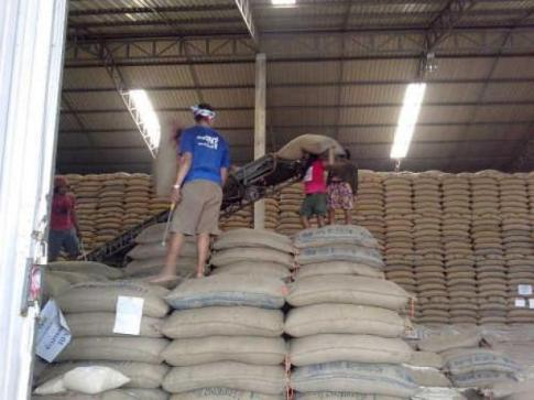 Thailand Inks Deal to Sell 2 Million Tonnes of Rice to China