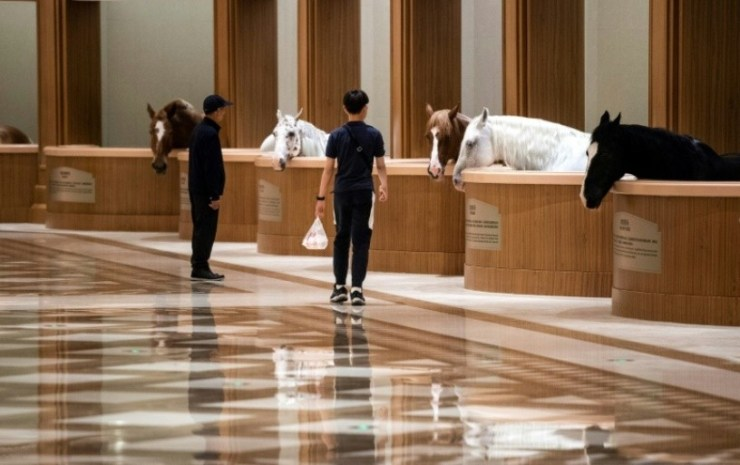 China's Growing Interest in Equestrian Sports and Lifestyle