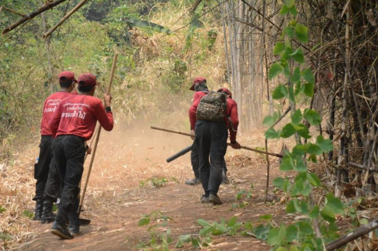Forest Fire in Chiang Rai's Mae Chan District Mostly Contained