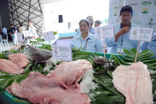 Participaron los productores de miel, café, pescados y otros. Foto: Cortesía Conanp