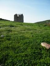 Ma future maison sur l'herbe grasse.