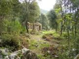 Une maison de berger dans une clairière