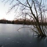 Cette partie du lac est gelée.